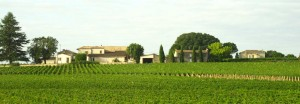 vineyards and chateau in the Bordeaux region of France