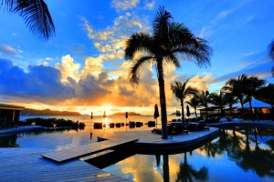 Pool, palm and sea at Sunset in St Barts