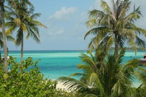 Blue water, green palms, white sand of the Maldives