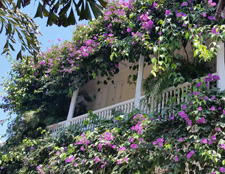 Cartagena, flowery balcony, Colombia