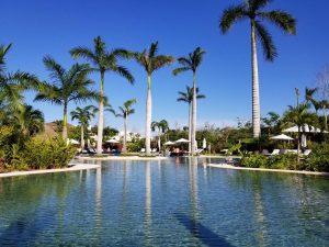 Riviera Maya, Mexico, pool, palm trees