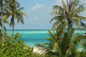 Maldives, island, palm trees, seascape